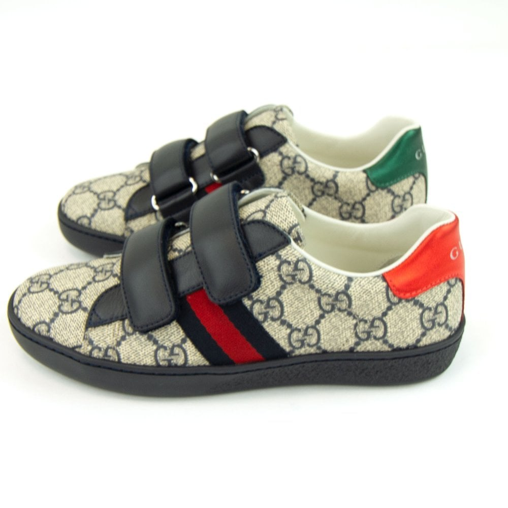 look good shoes sale official buy sale Ace GG Supreme Sneaker Beige